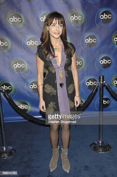 Actor Lisa Sheridan attends the ABC Winter Press Tour All Star Party at The Wind Tunnel on January 21 2006 in Pasadena California