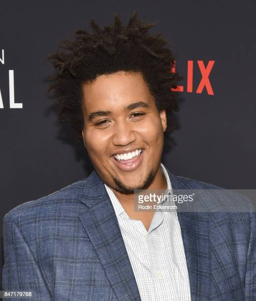 Actor Lou Wilson attends the premiere of Netflix's American Vandal at ArcLight Hollywood on September 14 2017 in Hollywood California