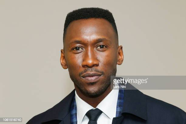 Actor Mahershala Ali attends The Academy of Motion Picture Arts and Sciences official screening of Green Book at the MOMA Titus 2 Theater on November...