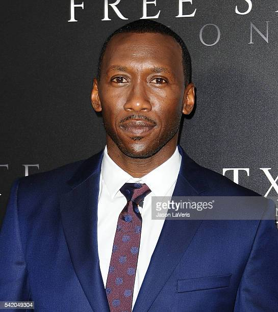 Actor Mahershala Ali attends the premiere of Free State of Jones at DGA Theater on June 21 2016 in Los Angeles California