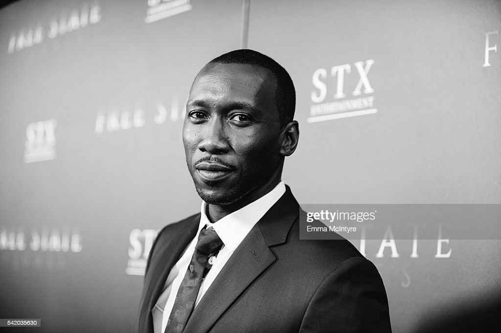 """Premiere Of STX Entertainment's """"Free State Of Jones"""" - Red Carpet"""
