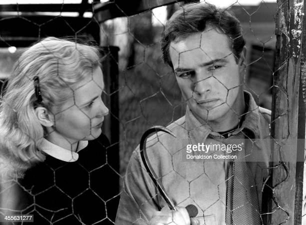 Actor Marlon Brando and Eva Marie Saint on the set of the movie 'On the Waterfront' which came out in 1954