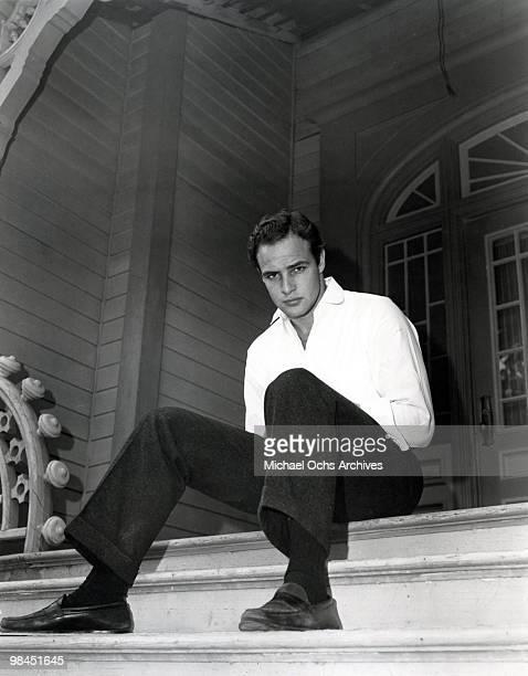 Actor Marlon Brando poses for a portrait in circa 1955.