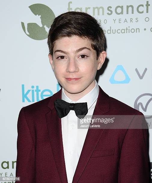 Actor Mason Cook attends Farm Sanctuary's 30th anniversary gala at the Beverly Wilshire Four Seasons Hotel on November 12 2016 in Beverly Hills...