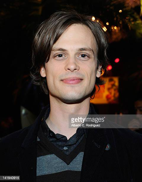 Actor Matthew Gray Gubler attends Twentieth Century Fox Home Entertainment's Alvin and the Chipmunks Chipwrecked Bluray and DVD release party at El...