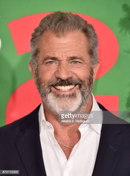 Actor Mel Gibson attends the premiere of Paramount Pictures' Daddy's Home 2 at The Regency Village Theatre on November 5 2017 in Westwood California