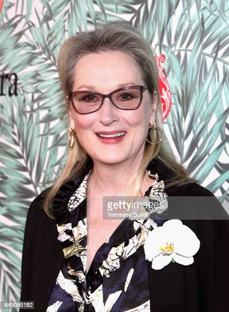 Actor Meryl Streep attends the tenth annual Women in Film PreOscar Cocktail Party presented by Max Mara and BMW at Nightingale Plaza on February 24...