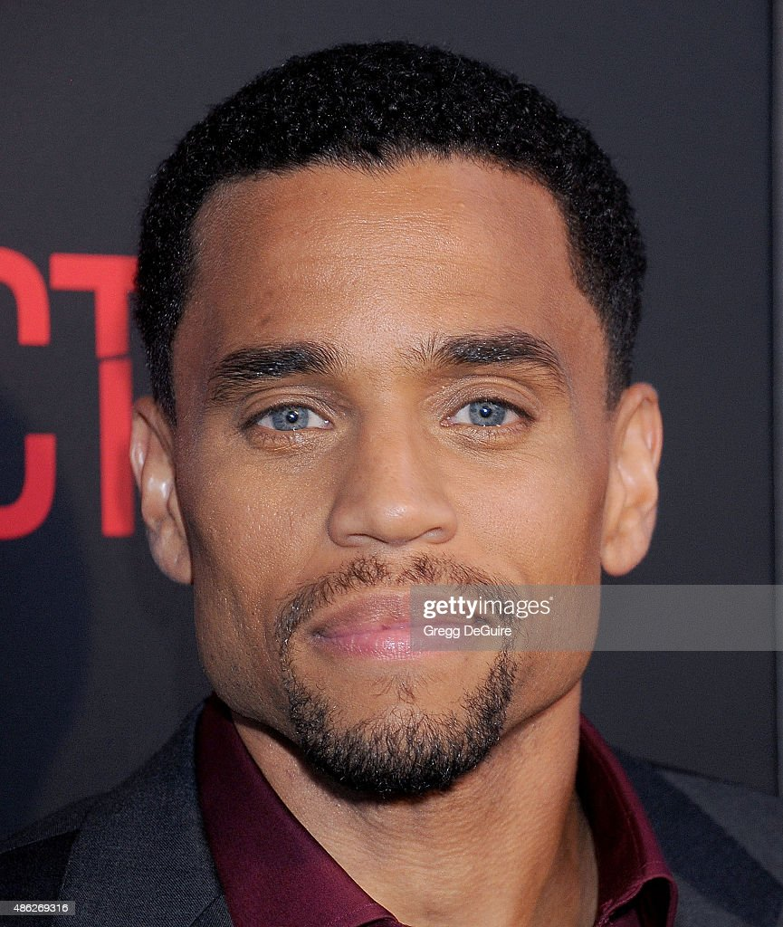Actor Michael Ealy arrives at the premiere of Screen Gems' 'The Perfect Guy' at The WGA Theater on September 2, 2015 in Beverly Hills, California.