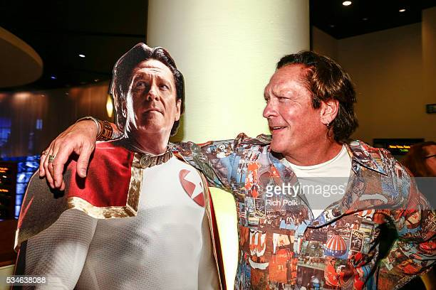 Actor Michael Madsen attends the Powers Premiere at ArcLight Cinemas on May 26 2016 in Culver City California