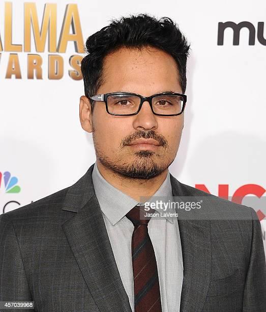 Actor Michael Pena attends the 2014 NCLR ALMA Awards at Pasadena Civic Auditorium on October 10 2014 in Pasadena California