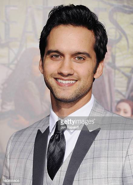 Actor Michael Steger arrives at the Los Angeles Premiere Beautiful Creatures at TCL Chinese Theatre on February 6 2013 in Hollywood California