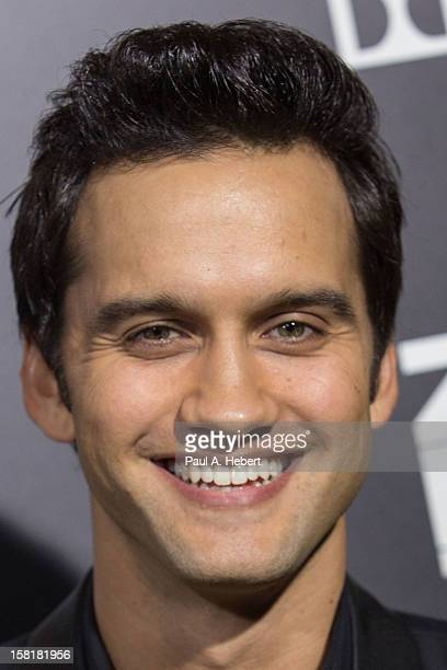 Actor Michael Steger arrives at the premiere of Columbia Pictures' Zero Dark Thirty held at the Dolby Theatre on December 10 2012 in Hollywood...