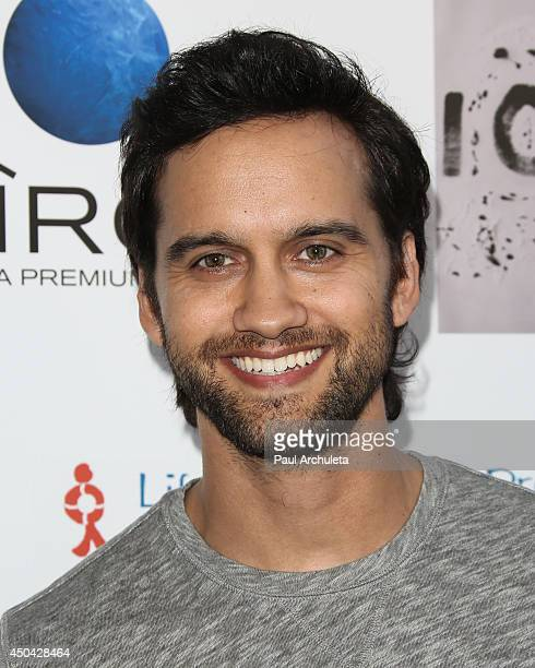 Actor Michael Steger attends the screening of I Choose at the Harmony Gold Theatre on June 10 2014 in Los Angeles California