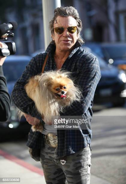 Actor Mickey Rourke is seen on January 31 2017 in Los Angeles California