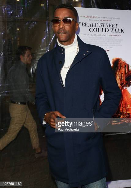 Actor Miguel A Nunez Jr attends the screening of If Beale Street Could Talk at the ArcLight Hollywood on December 04 2018 in Hollywood California