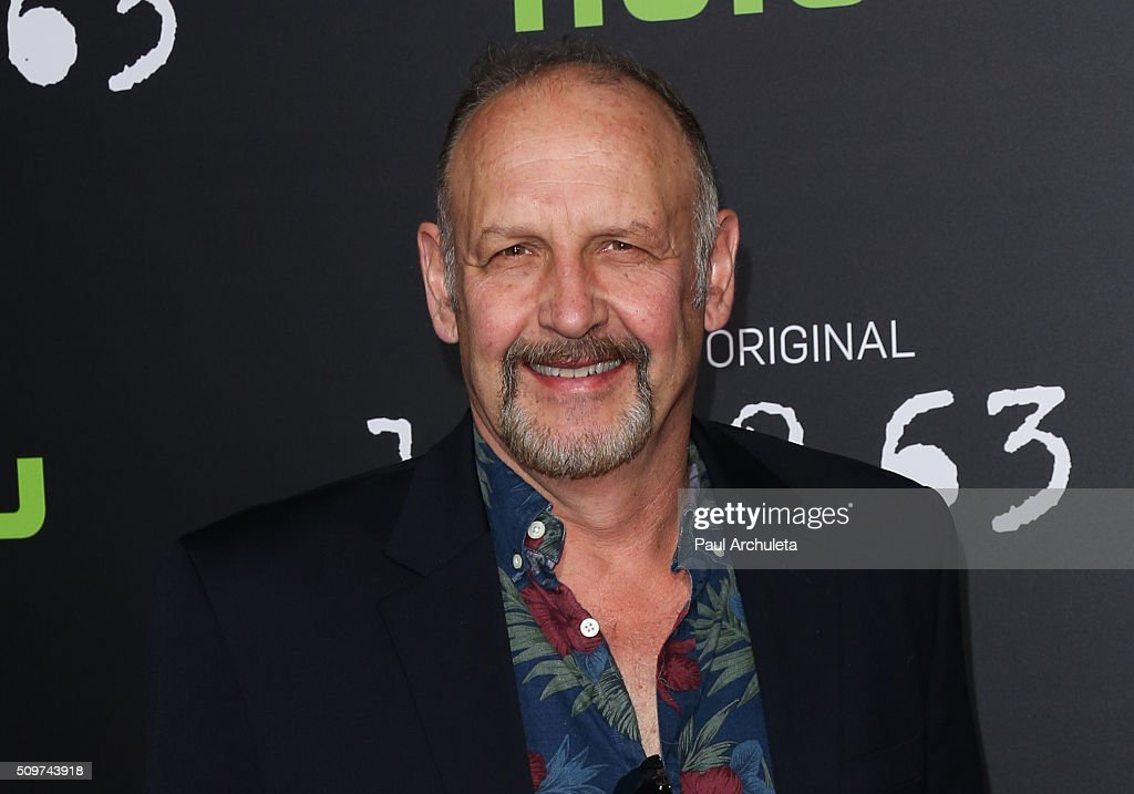 "Premiere Of Hulu's ""11.22.63"" - Arrivals : News Photo"