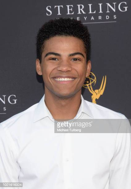 Actor Noah Alexander Gerry attends the Television Academy's Daytime Programming Peer Group Reception at Saban Media Center on August 22 2018 in North...