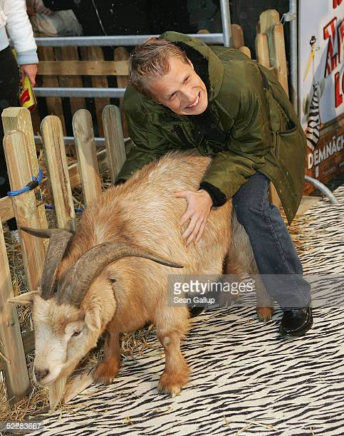 Actor Oliver Pocher clowns with a goat at the German premiere of Racing Stripes on March 6 2005 in Berlin Germany