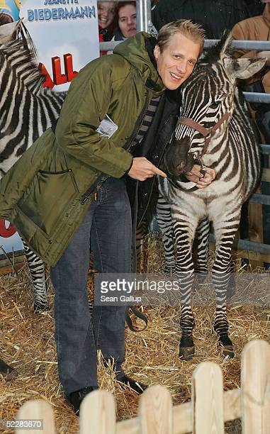 """Actor Oliver Pocher clowns with a zebra at the German premiere of """"Racing Stripes"""" on March 6, 2005 in Berlin, Germany."""
