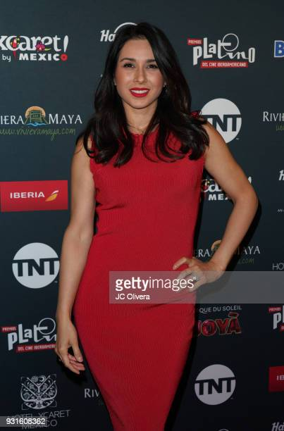 Actor Patricia Maya attends the 5th Annual Premios PLATINO Of Iberoamerican Cinema Nominations Announcement at Hollywood Roosevelt Hotel on March 13...