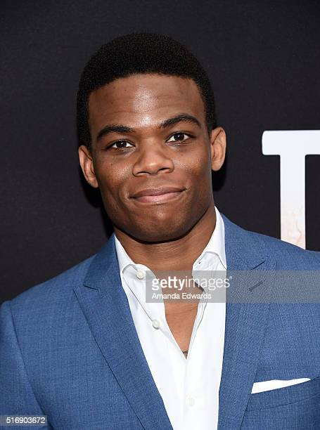 """Actor Paul James arrives at the premiere of Hulu's """"The Path"""" at the ArcLight Hollywood on March 21, 2016 in Hollywood, California."""