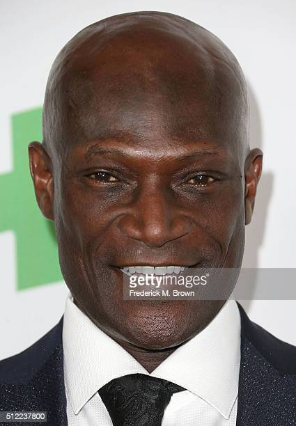 Actor Peter Mensah attends the Global Green USA's 13th Annual PreOscar Party at the Mr C Beverly Hills Hotel on February 24 2016 in Beverly Hills...