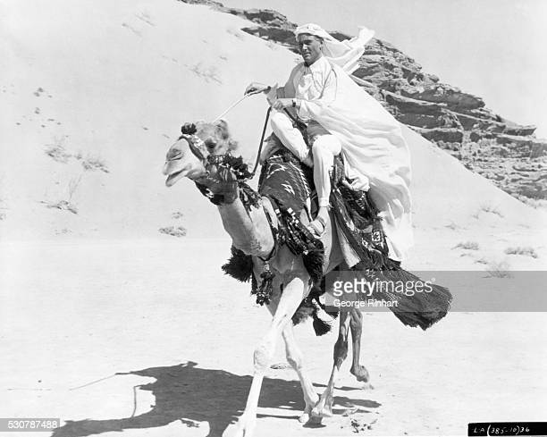Actor Peter O'Toole rides a camel in the title role of Columbia's 1963 production of Lawrence of Arabia Undated movie still