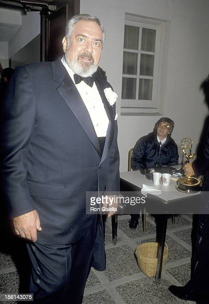 Actor Raymond Burr attends the 38th Annual Primetime Emmy Awards on September 21 1986 at Pasadena Civic Auditorium in Pasadena California