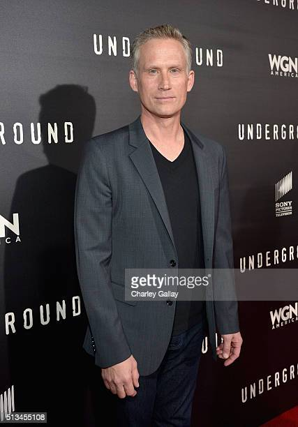 """Actor Reed Diamond attends WGN America's """"Underground"""" World Premiere on March 2, 2016 in Los Angeles, California."""