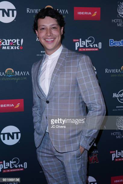 Actor Reynaldo Pacheco attends the 5th Annual Premios PLATINO Of Iberoamerican Cinema Nominations Announcement at Hollywood Roosevelt Hotel on March...