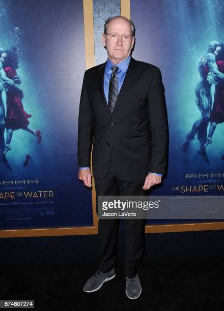 Actor Richard Jenkins attends the premiere of 'The Shape of Water' at the Academy of Motion Picture Arts and Sciences on November 15 2017 in Los...