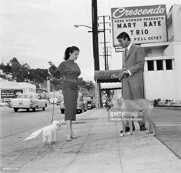 Actor Robert Evans with his boxer dog talks with actress Joan Bradshaw and her little poodle outside the Crescendo in Los AngelesCalifornian