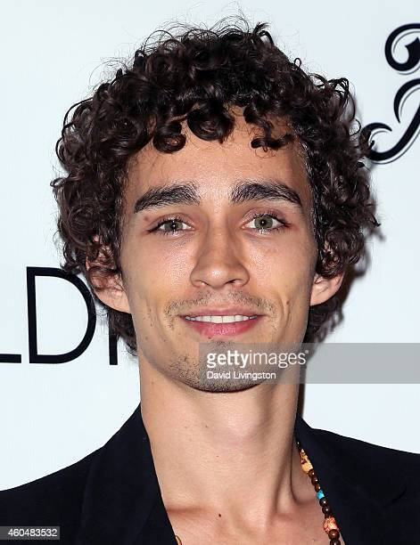 Actor Robert Sheehan attends the Wayke Up Fundraiser presented by Wildfox and Ladygunn Magazine hosted by Nikki Reed at Sofitel Hotel on December 14...