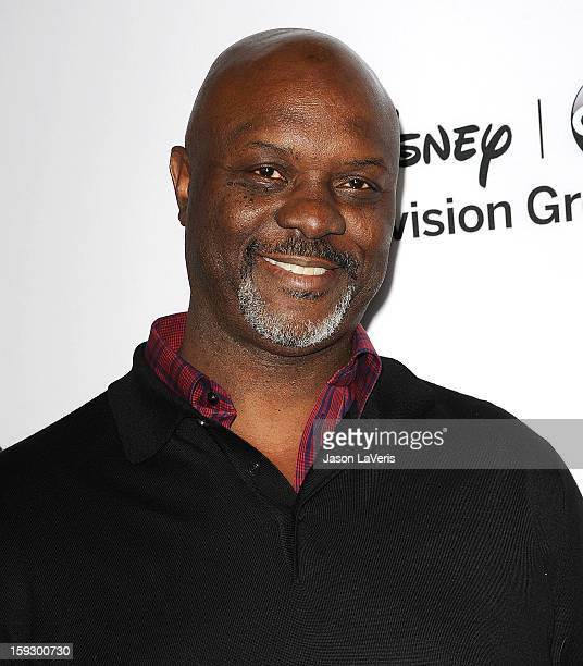 Actor Robert Wisdom attends the Disney ABC Television Group 2013 TCA Winter Press Tour at The Langham Huntington Hotel and Spa on January 10, 2013 in...