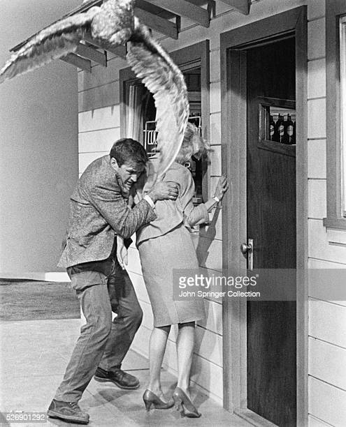 Actor Rod Taylor as Mitch Brenner and Tippi Hedren as Melanie Daniels in Alfred Hitchcock's 1963 film The Birds