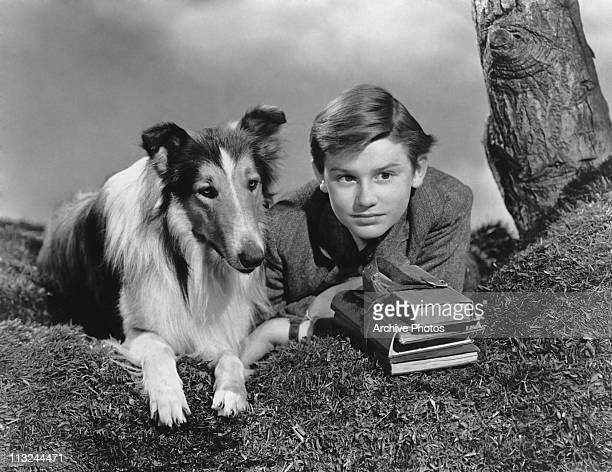 Actor Roddy McDowall with Lassie in the 1943 film 'Lassie Come Home'
