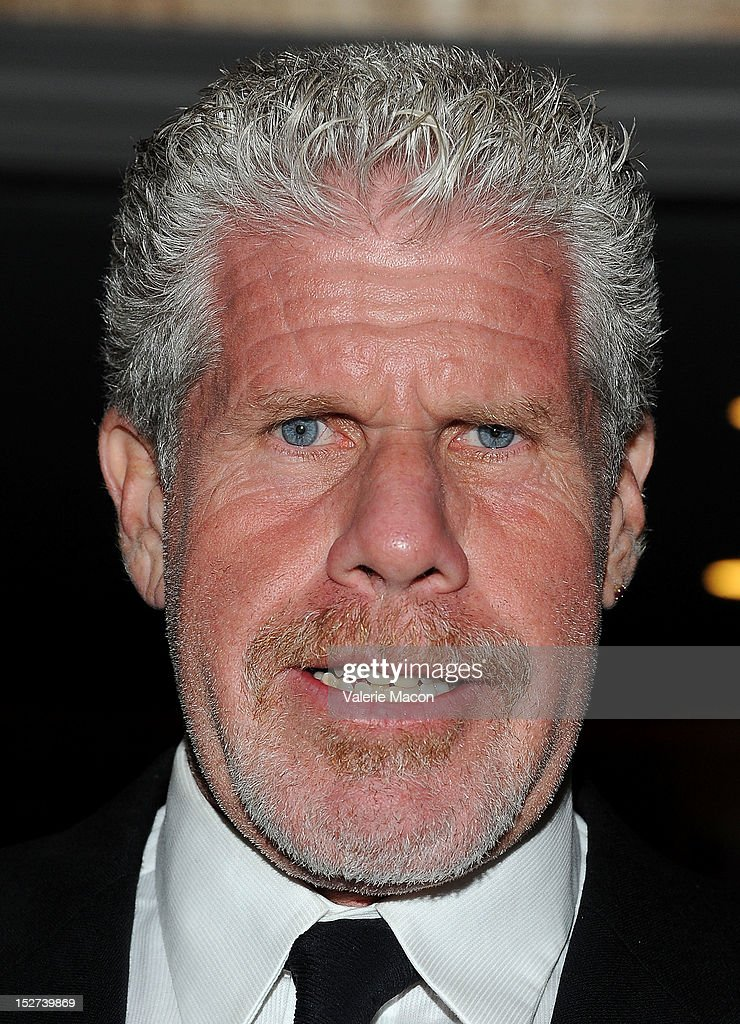 Actor Ron Perlman arrives at The National Multiple Sclerosis Society's 38th Annual Dinner Of Champions at the Hyatt Regency Century Plaza on September 24, 2012 in Los Angeles, California.
