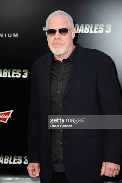 Actor Ron Perlman attends Lionsgate Films' 'The Expendables 3' premiere at TCL Chinese Theatre on August 11 2014 in Hollywood California