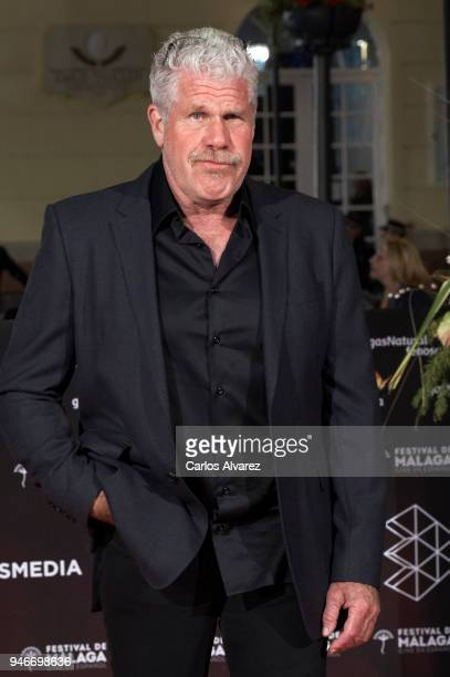 Actor Ron Perlman attends 'No Dormiras' premiere at the Cervantes Theater on April 15 2018 in Malaga Spain