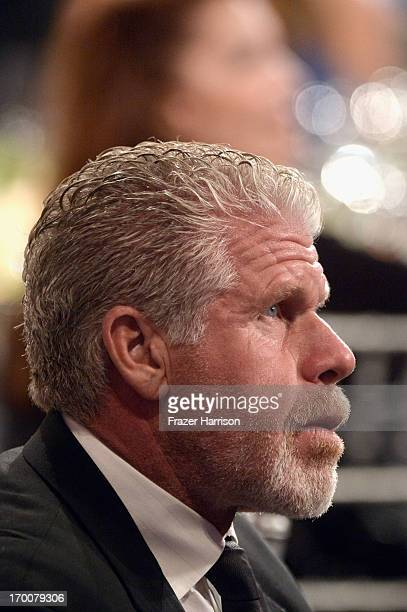 Actor Ron Perlman attends the 41st AFI Life Achievement Award Honoring Mel Brooks at Dolby Theatre on June 6 2013 in Hollywood California Special...