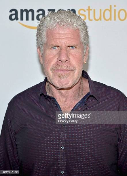 Actor Ron Perlman attends the 'Hand Of God' panel discussion at the Amazon Studios portion of the 2015 Summer TCA Tour on August 3 2015 in Beverly...