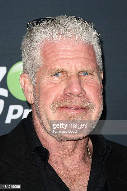 Actor Ron Perlman attends the premiere of Amazon's series 'Hand Of God' held at the Ace Theater Downtown LA on August 19 2015 in Los Angeles...