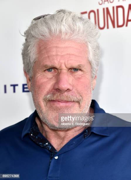 Actor Ron Perlman attends the SAGAFTRA Foundation 8th Annual LA Golf Classic Fundraiser at Lakeside Golf Club on June 12 2017 in Los Angeles...