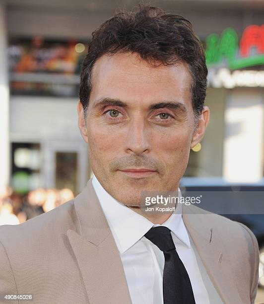 Actor Rufus Sewell arrives at the Los Angeles Premiere Hercules at TCL Chinese Theatre on July 23 2014 in Hollywood California