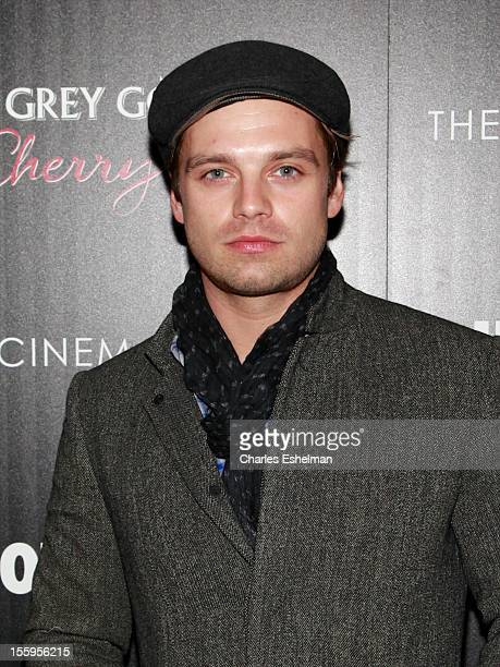 Actor Sebastian Stan attends Gato Negro Films The Cinema Society screening of 'Hotel Noir' at the Crosby Street Hotel on November 9 2012 in New York...
