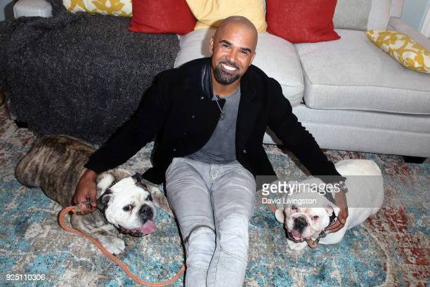 Actor Shemar Moore and his dogs visit Hallmark's Home Family at Universal Studios Hollywood on February 27 2018 in Universal City California