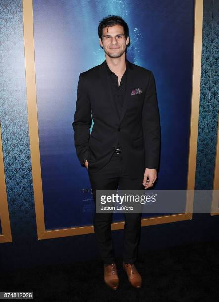 Actor Skyler Bible attends the premiere of 'The Shape of Water' at the Academy of Motion Picture Arts and Sciences on November 15 2017 in Los Angeles...