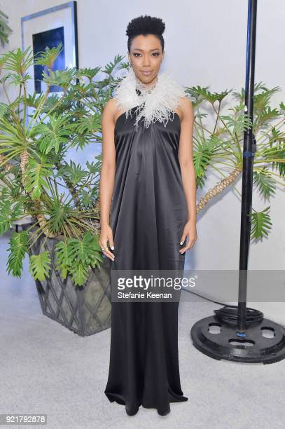 Actor Sonequa MartinGreen attends the Costume Designers Guild Awards at The Beverly Hilton Hotel on February 20 2018 in Beverly Hills California
