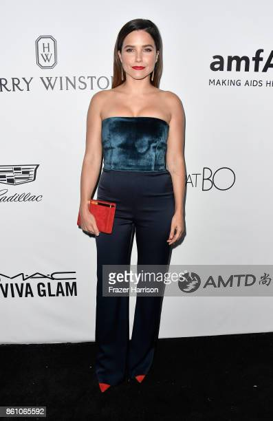 Actor Sophia Bush attends the amfAR Gala at Ron Burkle's Green Acres Estate on October 13 2017 in Beverly Hills California