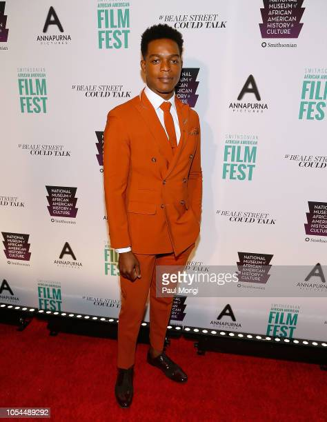 """Actor Stephan James attends the """"If Beale Street Could Talk"""" premiere at National Air and Space Museum on October 27, 2018 in Washington, DC."""